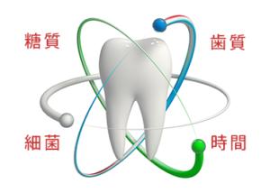 糖質・歯質・細菌ブラス時間